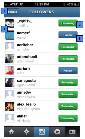 instagram_followers.png