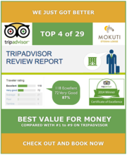 Mokuti Etosha Lodge TOP 4 on Tripadvisor.png